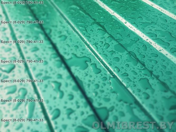 Профнастил С-8 RAL 6005 в Бресте - цвет зелёный